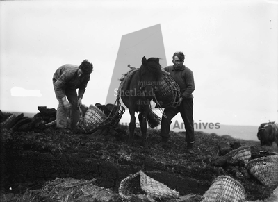 Loading ponies at the peat bank